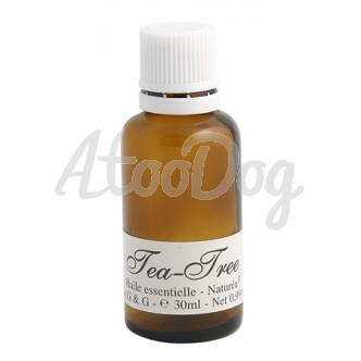 Huile essentielle tea tree anti puce anti tique pour chien natur a - Huile essentielle puce chat ...