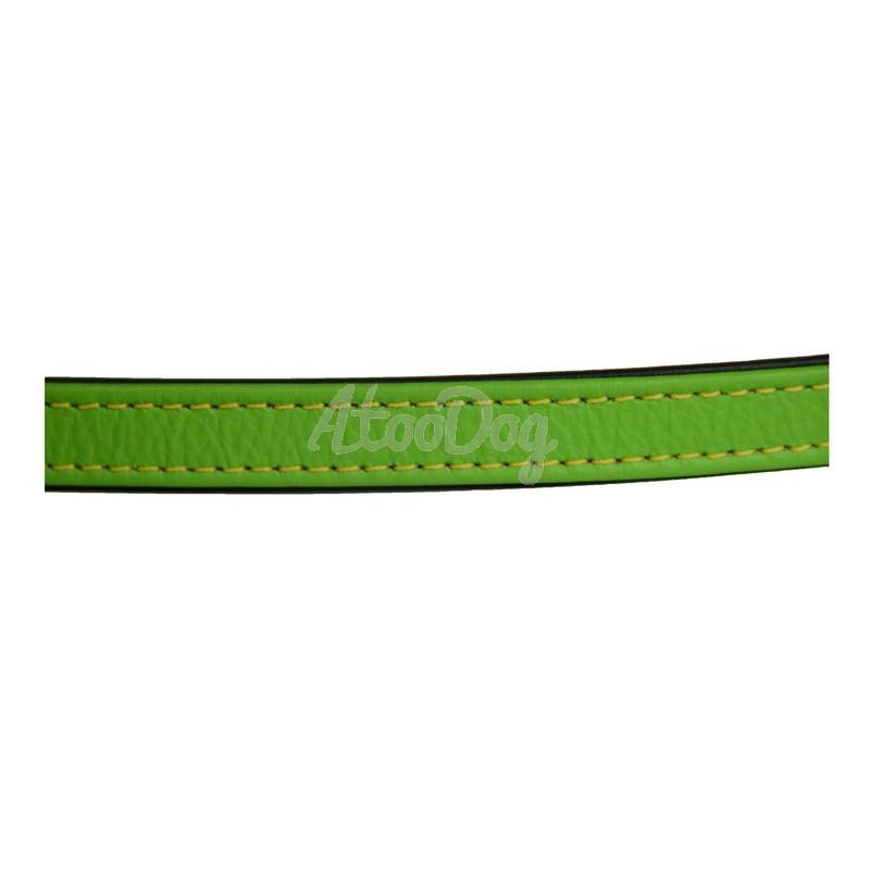 laisse pour chien vintage vert kiwi en cuir de vachette karlie. Black Bedroom Furniture Sets. Home Design Ideas
