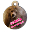 Medaille personalisee chien My Dog photo entière Falbala