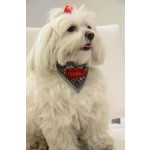 barette chien rouge pois