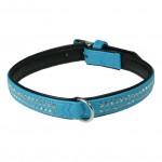collier chien strass bleu