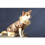 manteau chien col moumoute