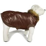 manteau chien hivers