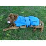 manteau ete chien
