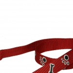 laisse rouge nylon
