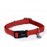 collier rouge pour chien