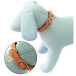 collier pour chien cuir