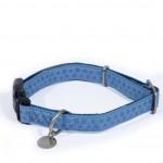collier bleu chien