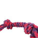chien noeud jouet