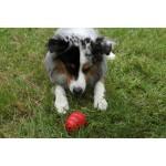 jouet kong chien rouge