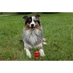 loisir kong rouge chien