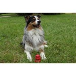 jouet macher rouge kong chien