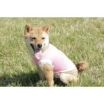 Tshirt rose woof chien