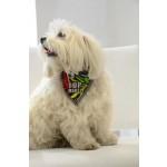 Foulard chien Top Model