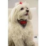 Foulard chien BD