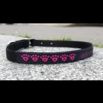 collier-coeur-rose-chien