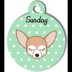 Médaille personnalisée vert pour petit chien crème et blanc