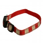 collier rouge chien