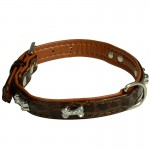 collier marron chien