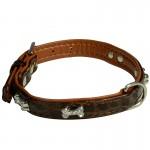 collier marron chien