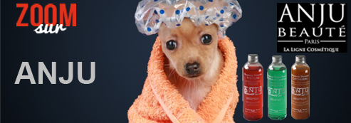 22d6541d12ae Shampooing chien, toilettage chien   Atoodog.fr