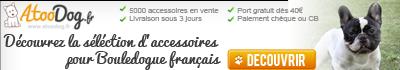 Découvrez la sélection d'accessoires pour Bouledogue français
