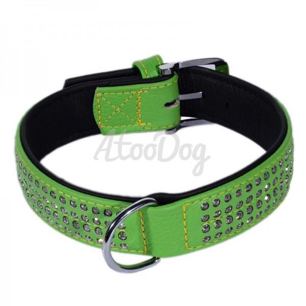 collier pour chien karlie