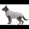 T-shirt post opératoire pour chien