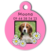 Medaille personalisee chien My Dog photo Moona