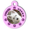 Medaille personalisee chien My Dog photo Poucette