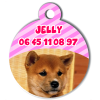 Medaille personalisee chien My Dog photo Jelly