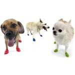 chausson-pour-chien