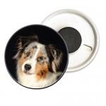 photo-aimant-personnalise-chien