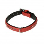 coller chien rouge