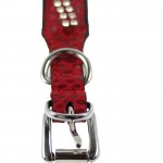 collier chien rouge