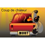coup chaud chien