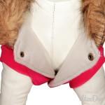 manteau caniche