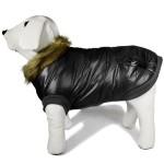 manteau chien noir