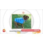 couverture réfrigérante chien
