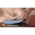 tapis réfrigérant chien