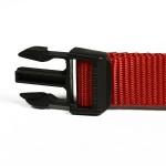 colliers pour chien rouge