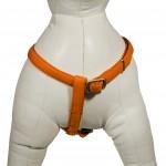 Harnais pour chien orange