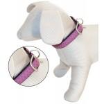 collier pour chien en cuir synthétique