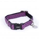 collier chien violet