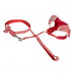 harnais flow rouge