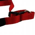 collier chien rouge noir