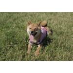 Tshirt mariniere rouge chien