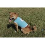 Tshirt chien woof azur