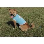 Tee-shirt bulle wouf bleu chien
