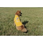 Tshirt Best friend jaune chien